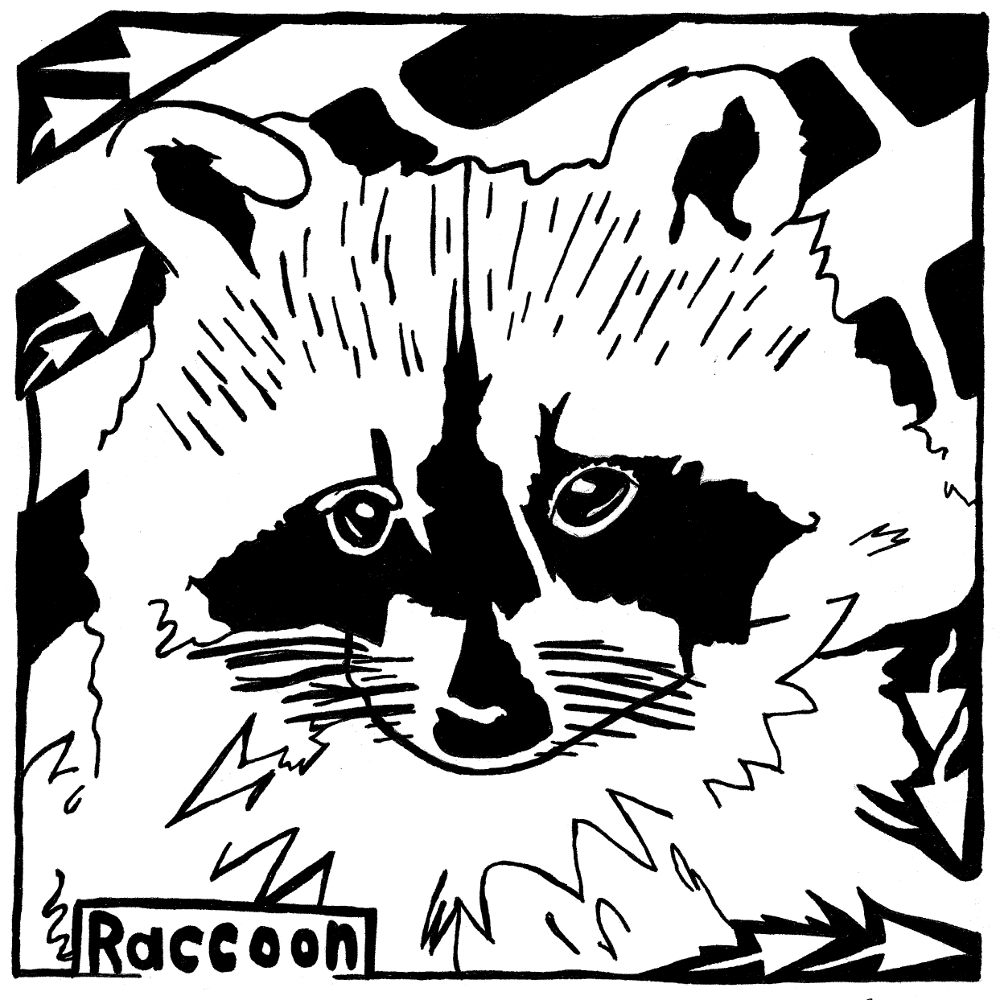 Maze of Raccoon for the Letter R Maze