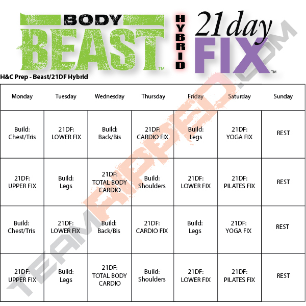 photo relating to Body Beast Schedule Printable identify Free of charge Beachbody Exercise session Downloads teamRIPPED