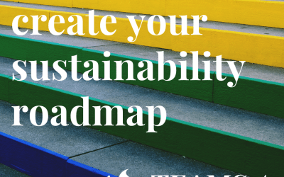The 4 key steps to create your sustainability roadmap