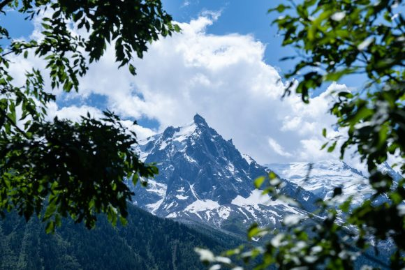green leaf trees and glacier mountains at the distance during day