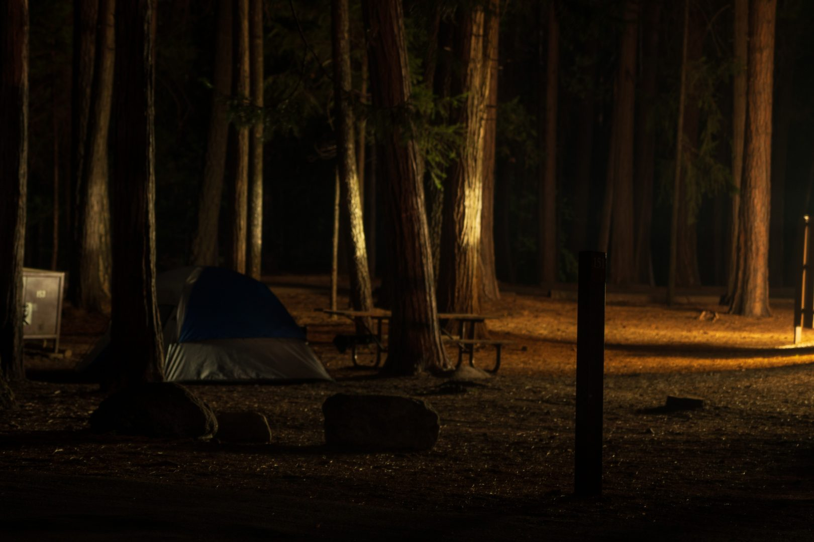blue tent in the middle of forest during daytime