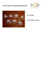 TOL Lapel Badges