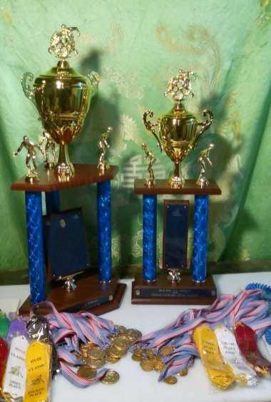 Wrestling Tournament Awards