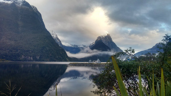 Milford Sound Cruise Schedule