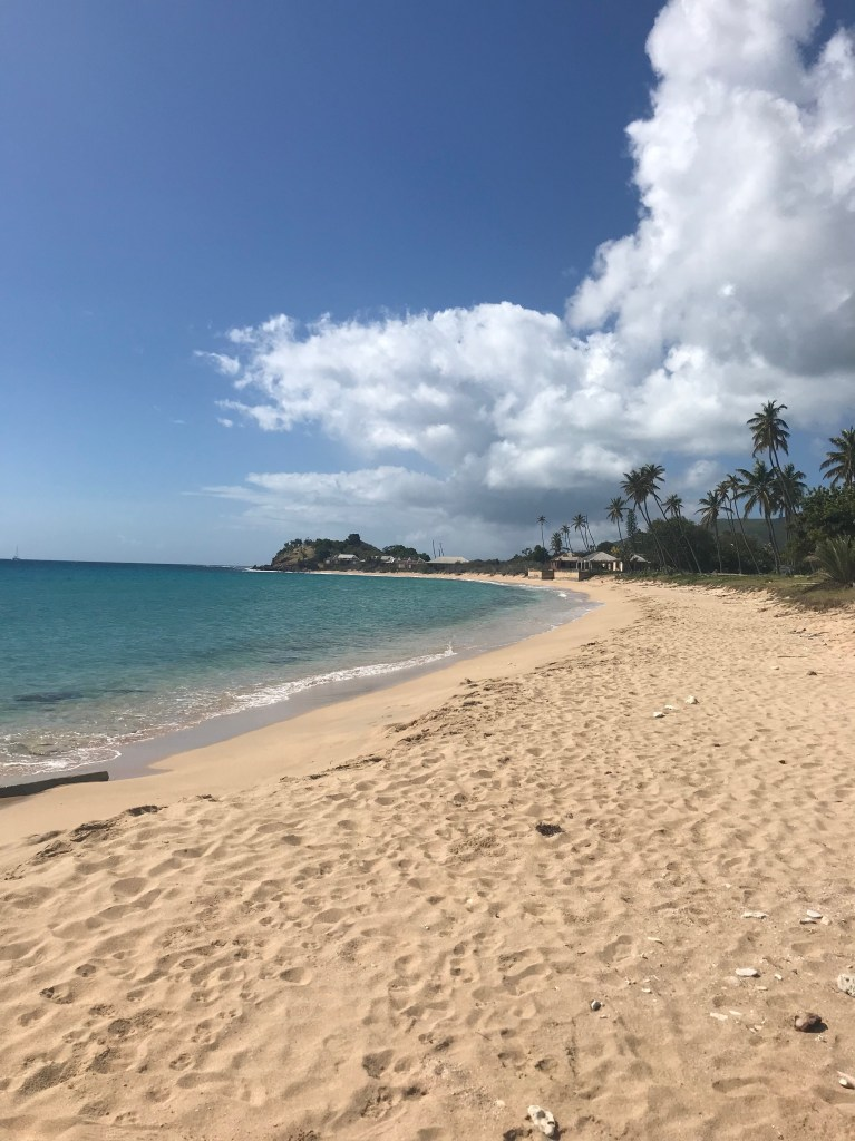 Morris Bay Beach in Antigua with blue water and palm trees lining caribbean sand