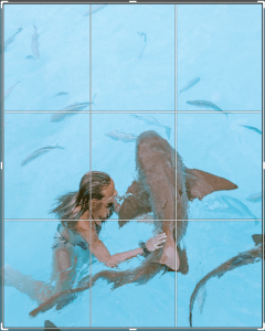travel photo tips shark rule of thirds