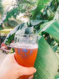 holding a beer towards a banana palm at the florida keys brewing company