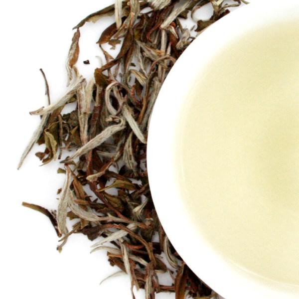 Snow Buds Loose Leaf White Tea brewed tea