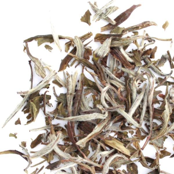 Snow Buds Loose Leaf White Tea