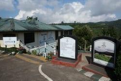 Pedro Estate