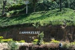 Labookellie Estate