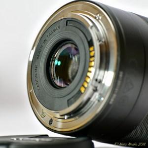 CanonEOSM - 850_7550.jpg