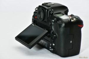 NikonD500 - 850_3501.jpg