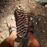 PCT Day58 on Trail or in Town (7/11, 1,287-1,316mile)