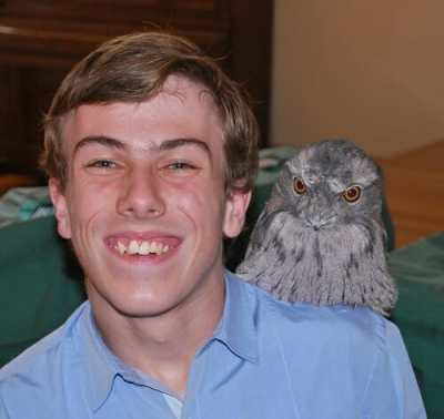 Daniel Clarke with Tawny Frogmouth at the Ranger Stacey Visit