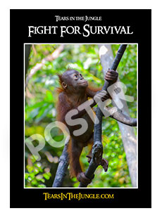 POSTER: Fight for Survival (A2)