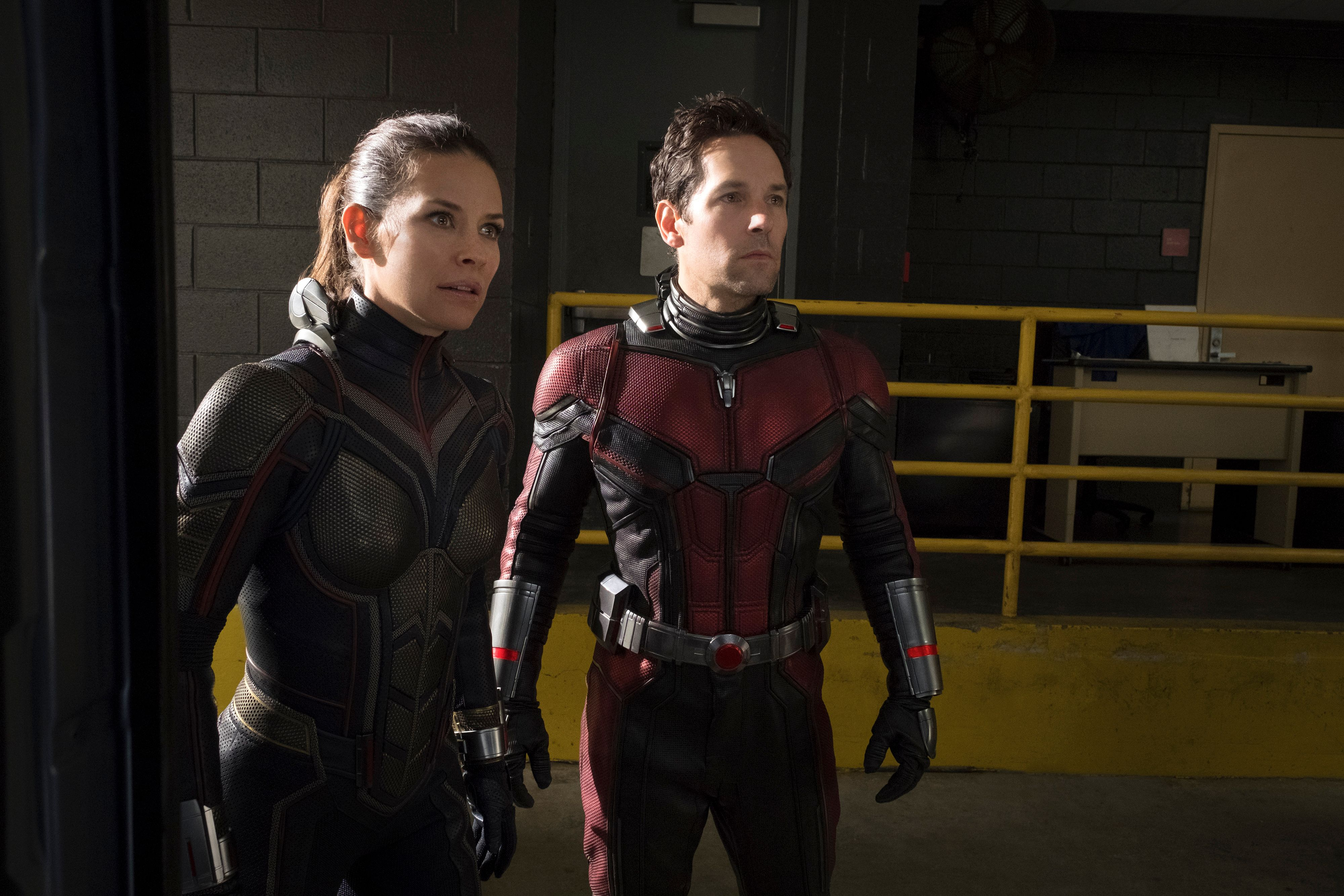 Resultado de imagem para ant-man and the wasp