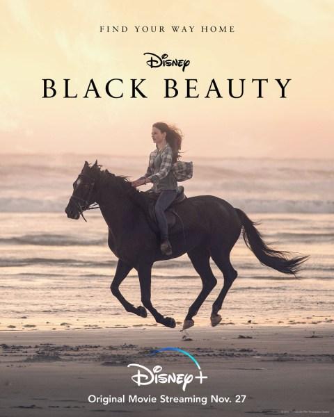 Black Beauty Movie Poster