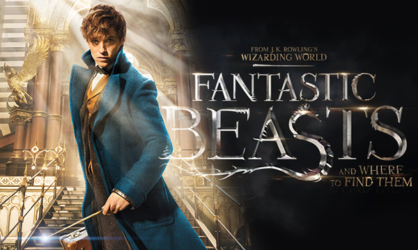 Fantastic Beasts And Where To Find Them Movie 2016