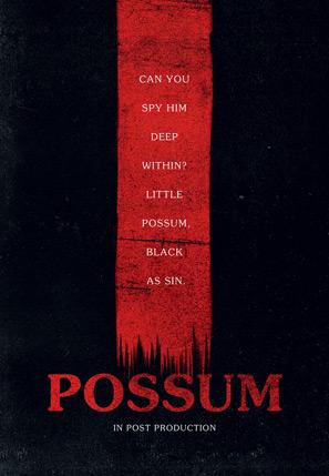 Possum Movie Teaser Poster
