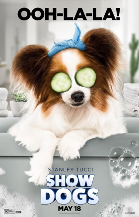 Show Dogs - PHILIPPE
