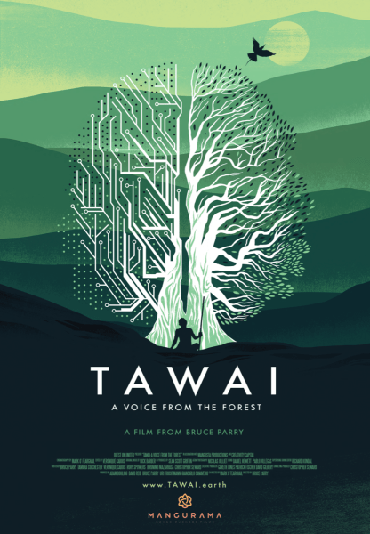 Tawai A Voice From The Forest