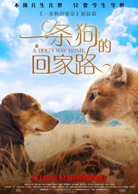 A Dog's Way Home New Chinese Poster