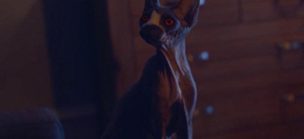 Pet Graveyard Film