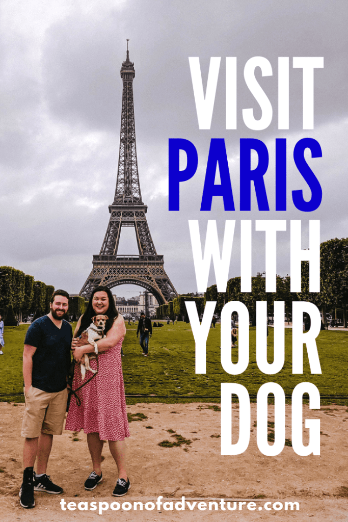 Everything you need to know for visiting Paris with a dog!