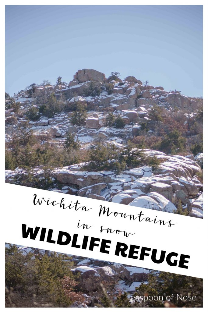 Hiking in the Wichita Mountains Wildlife Refuge in southwest Oklahoma gets even better in the snow! | Teaspoon of Nose