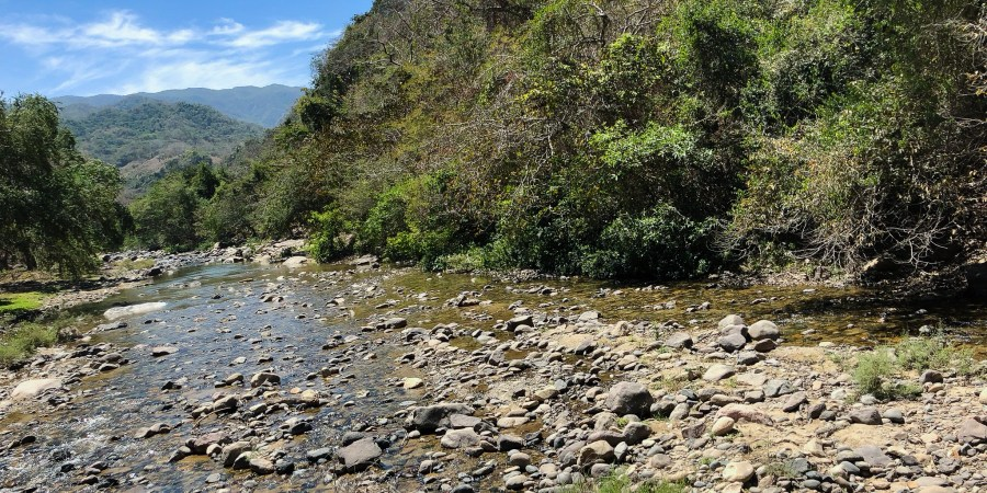 There's more to do in Puerto Vallarta than just lying by the beach. Check out my recommendations for excursions and day trips!   Teaspoon of Nose
