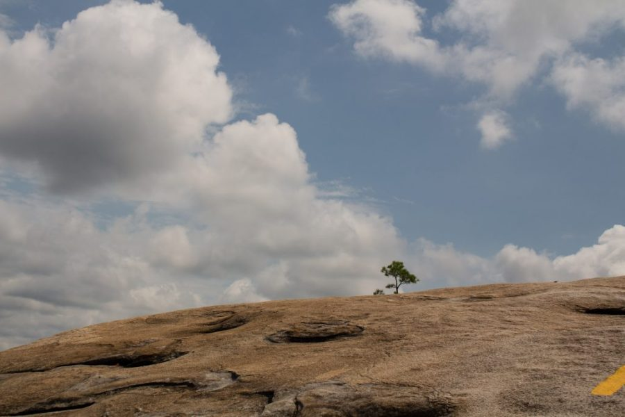Stone Mountain is a great day trip out of Atlanta, whether or not hiking is your thing!   Teaspoon of Nose