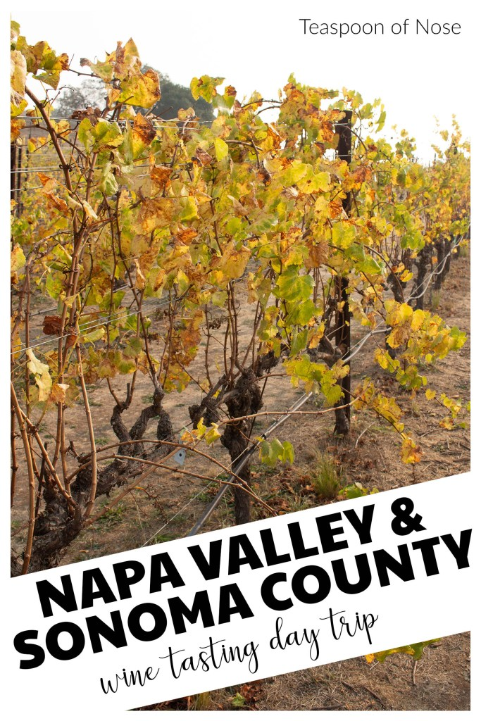 No trip to northern California is complete without exploring Napa Valley and Sonoma County. Here's how to maximize a day trip!