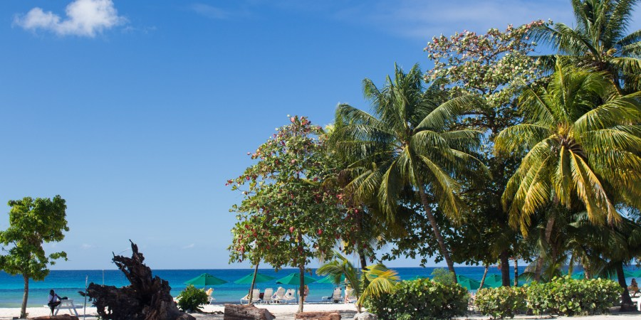 Whether you're into history, beaches, adventure or just here for the rum, you can find something to suit! Here's what to see in Barbados!