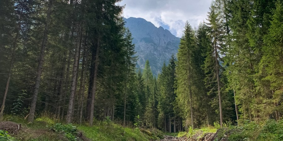 The Dolomites may be most known for skiing, but they're excellent for hiking in the off-season! Today I'm sharing a favorite trail we tried recently.