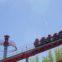 A roller coaster bachelorette at Carowinds