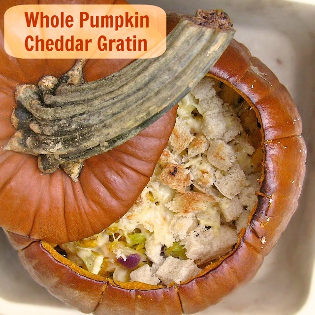 You CAN cook a whole pumpkin in your oven! Try this easy and delicious gratin recipe with pumpkin, cheddar, onions and apples - a perfect autumn recipe | WHOLE PUMPKIN CHEDDAR GRATIN | @TspCurry - For more fall recipes see TeaspoonOfSpice.com