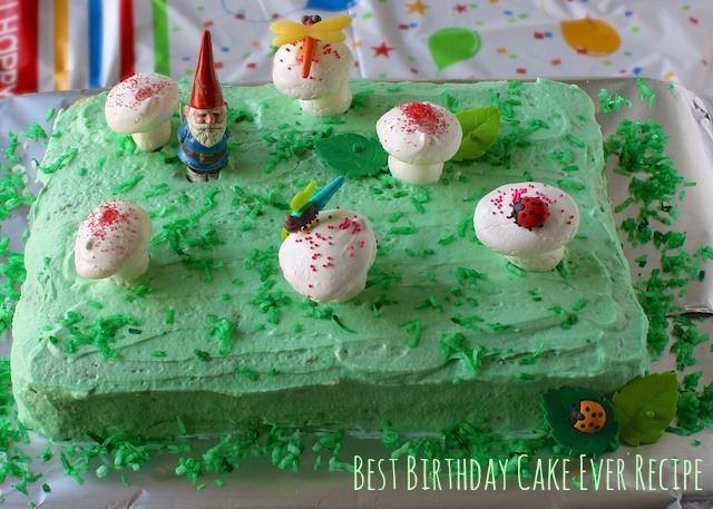 Best Birthday Cake Ever Recipe | Teaspoonofspice.com