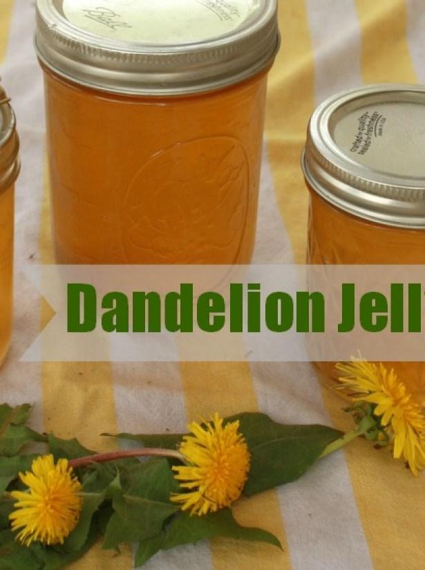 Tastes like honey! Impossibly easy to make: DANDELION JELLY