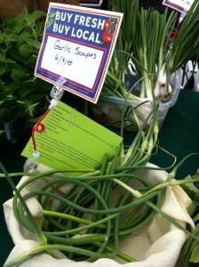 Garlic Scapes – Score!