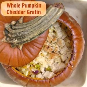 Whole Pumpkin Cheddar Gratin   TeaspoonofSpice.com