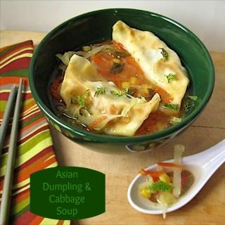 Asian Dumpling & Cabbage Soup | Teaspoonofspice.com