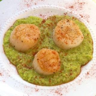 Seared Scallops with Fava Bean Puree | Teaspoonofspice.com
