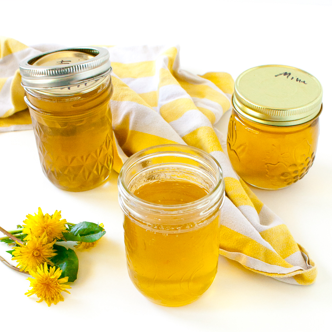 Foraging leads to easy jelly: HOW TO MAKE DANDELION JELLY | @TspCurry - TeaspoonOfSpice.com