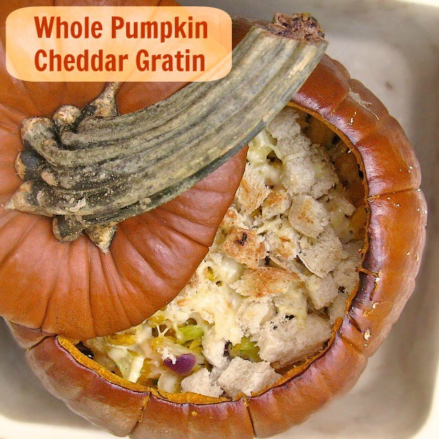 Did you know you can cook a whole pumpkin in the oven? It's so easy and makes a great vessel for soups, chili or this Pumpkin Cheddar Gratin - recipe at @teaspoonofspice.com