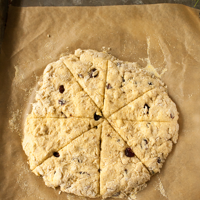 A little holiday baking. In a jiffy: 5 Ingredient Eggnog Cranberry Scones via @TspCurry
