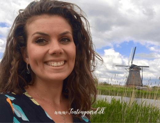 hollandsk parlør, parlør på hollandsk, hollandske ord, hollandsk sprig, hollandsk rejseguide, rejseguide til holland, rejseblog holland, travelblog, danish travelblog