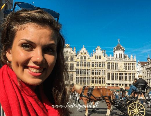 Belgium, Brussel, solo rejse, solo rejse til brussel, solo rejse til Belgium, solo rejse, rejseblog, seværdigheder i Brussel,