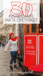 Istanbul, rejseblog istanbul, fakta om Tyrkiet, viden om tyrkiet, det vidste du ikke om tyrkiet, tyrkiets største by, fakta om Tyrkiet, rejseblog tyrkiet, Dansih travelblogger, danske rejseblogs
