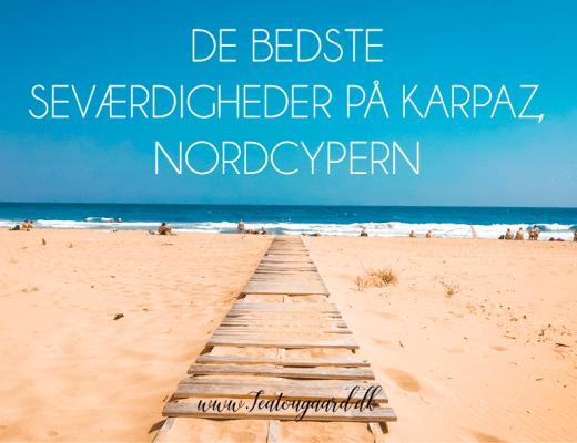 Seværdigheder på Nordcypern, Golden beach, Golden Beach Nordcypern, Dipkarpaz, karpaz, Cypern vilde æsler,